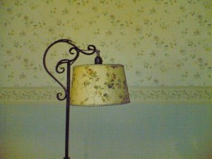 Vintage lampshade accidentally matches wall paper in new house....